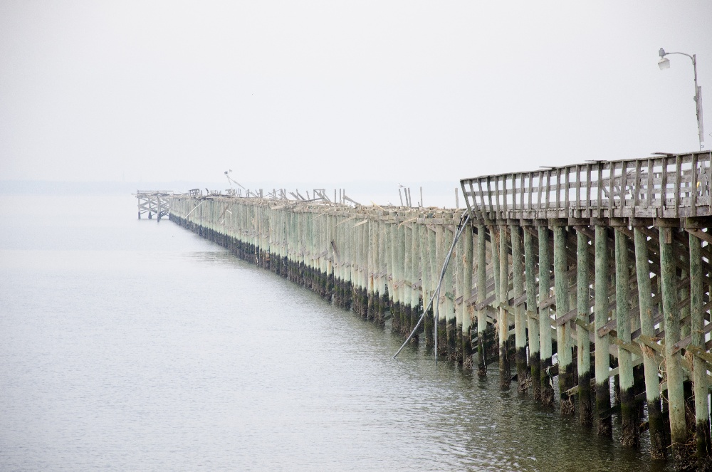 Sandy Hook Point - Monmouth County, New Jersey - Around Guides